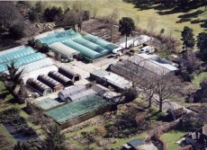 Millais Nurseries aerial picture