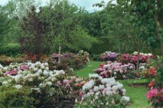 Trials garden - open throughout the year